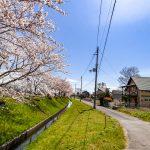 滋賀県高島市新旭町 桜並木の湖周道路が目の前にある黄色いウッディハウス
