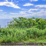 洲本市五色町鳥飼浦 オーシャン&サンセットビューが楽しめる贅沢な土地80坪