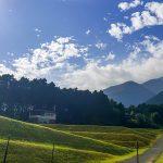 山側は広大な棚田が広がり山&湖からの風がとても気持ちいい!