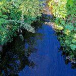 敷地横を流れる水路