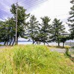 敷地内から琵琶湖に向かって