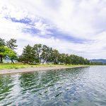 湖西の松林と白砂の風景