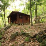 京都府南丹市園部町 森林に囲まれたミニログハウス