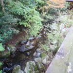 渓流側のデッキからの眺め