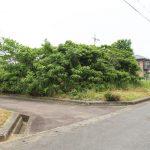 滋賀県高島市新旭町「びわ湖に近い土地」